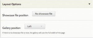 Dropdown options for showcase file position and gallery position